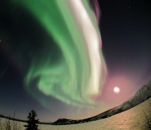 aurora borealis by David Cartier