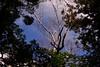 Photo:洞察力は景色をより透明にしていく By