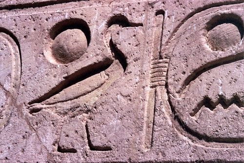 Egyptian goose hieroglyph