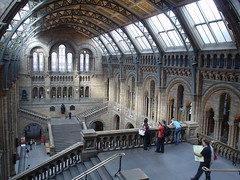 London Natural History Museum tour UK