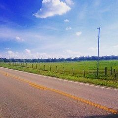 Blue horizons and green pastures on Mobile Hwy south of Hope Hull, AL. #theworldwalk #travel #AL #twwphotos