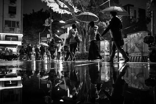 冬雨-台北。