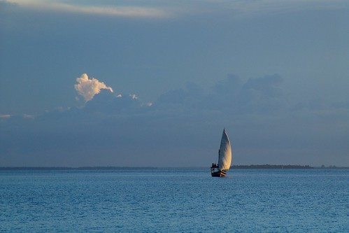 Zanzibar - dhow caught in the late afternoon light