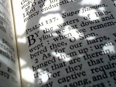 Psalm 137