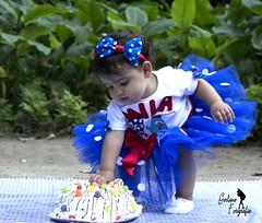 mila 1 Aninho
