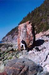 bob on topsail beach
