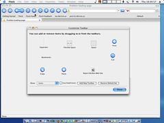 Flock Web Browser Customize Toolbar