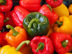 "die Paprika • <a style=""font-size:0.8em;"" href=""http://www.flickr.com/photos/42554185@N00/18424634134/"" target=""_blank"">View on Flickr</a>"
