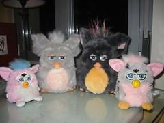 Reunión Furby I
