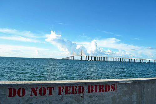 The Bridge from Skyway Pier (St. Petersburg, Florida)