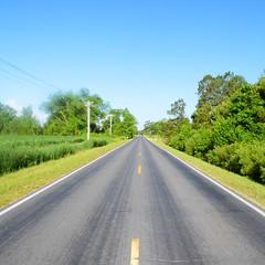 The Road Ahead. Day 43. Laurel Rd in North River, NC. #TheWorldWalk #nc #travel #wwtheroadahead