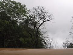 Kollibacchalu Dam -Malenadu Heavy Rain Effects Photography By Chinmaya M.Rao   (52)