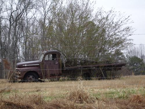 Trees Growing Through Flatbed Truck, Cullman County AL