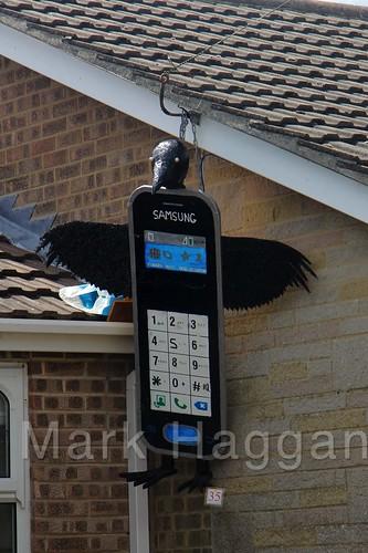 Mobile Crow