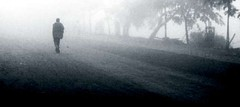 Man in Foggy Morning (Super wide)