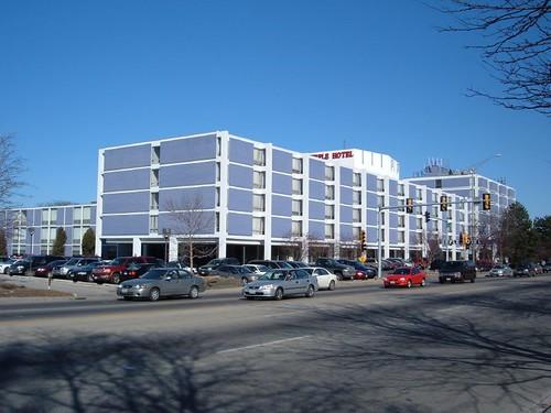 Purple Hotel