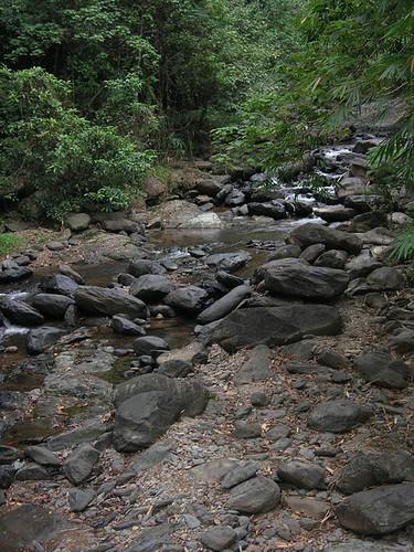 น้ำตกป่าละอู ถ่ายเมื่อปี 2006 ไปพักกับพี่โบ พี่แมน พี่ป๋อง เชอรี่