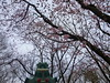 Photo:Bronzong in Sakura, Chiba 1 (Sakura castle remains) By