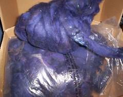 blue wool fibre