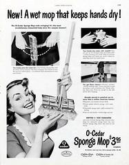 O-Ceder - Sponge Mop