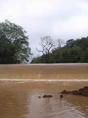 Kollibacchalu Dam -Malenadu Heavy Rain Effects Photography By Chinmaya M.Rao   (91)
