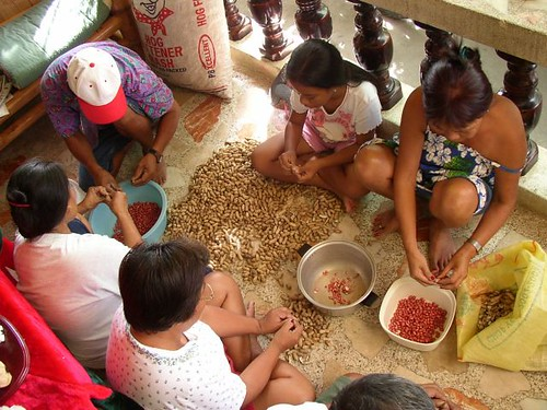 Philippines Pinoy Filipino Pilipino Buhay Life people pictures photos life rural woman, working, family, shelling peanut