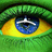 the Brasil group icon