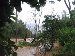 Kollibacchalu Dam -Malenadu Heavy Rain Effects Photography By Chinmaya M.Rao   (71)