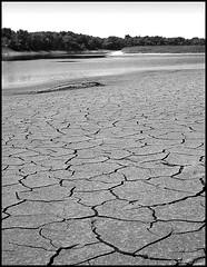 Drought Po River