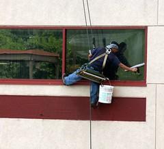 Working - Window Washer