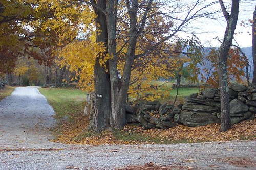 Autumn in Vermont 2