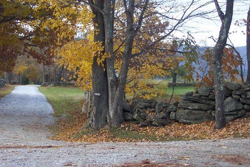 Autumn in Vermont 2