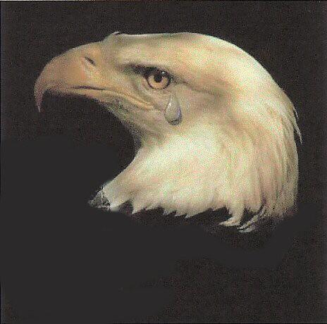 Eagle Tears Are the Worst Kind of Tears