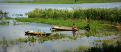 Near the former killing fields of Cambodia - Decent work and agriculture - Numayr Chowdhury