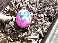 egg-hunt-last-egg