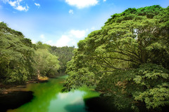river in Philippines, beautiful water, beautiful, trees, sky, clouds