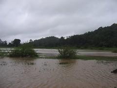 Kollibacchalu Dam -Malenadu Heavy Rain Effects Photography By Chinmaya M.Rao   (117)