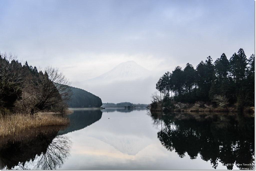 [日本富士山環山之旅]-靜岡-富士宮-我在田貫湖遇見逆富士