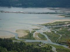 Cowichan River estuary