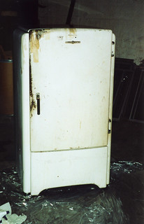 Refridgerator with character