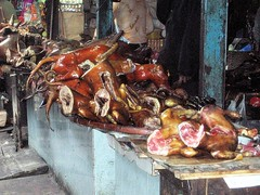 Thit Cho - Dog Meat in Hanoi