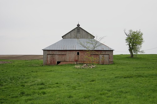 Untitled [Barn, North elevation, East central Iowa] by Matt Niebuhr