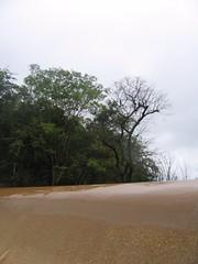 Kollibacchalu Dam -Malenadu Heavy Rain Effects Photography By Chinmaya M.Rao   (49)