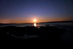 Maine Night