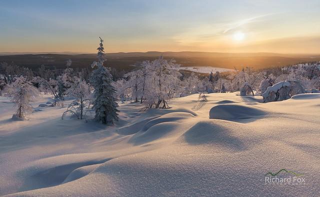 Snow Fell