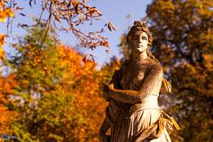 Herbst an der Saaleschleife-12