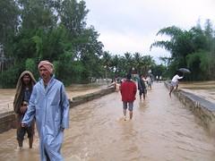Kollibacchalu Dam -Malenadu Heavy Rain Effects Photography By Chinmaya M.Rao   (151)
