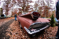 Pumpkin Run 00060