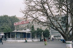All India Institute of Medical Sciences