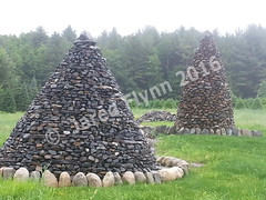 jared-flynn-christmas-tree-cairns-fog